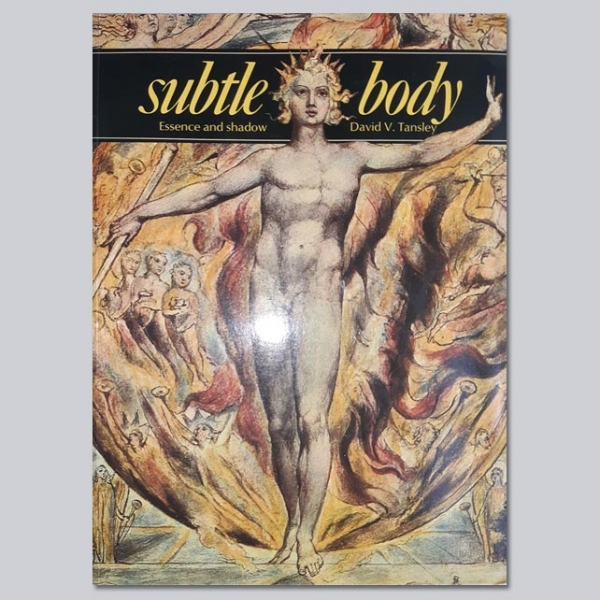 Subtle Body: Essence and Shadow - by David V Tansley